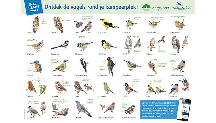 Vogelkaart Kampeerplek