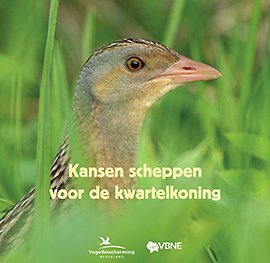 Cover brochure Kwartelkoning