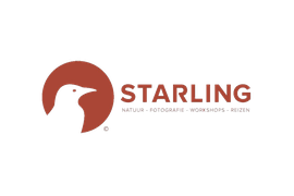 Logo Starling