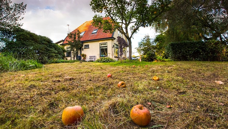 Autumn garden / Wil Leurs (Agami)