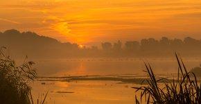 Biesbosch / Shutterstock