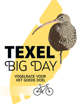 Logo Texel Big Day