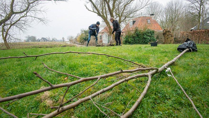 Hoogstamfruitboom planten / Marcel van Kammen