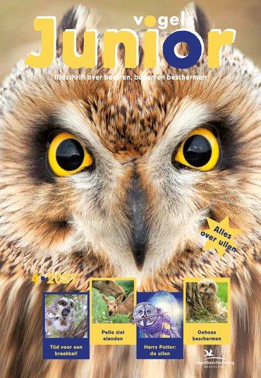 Cover Vogels Junior 04/2021