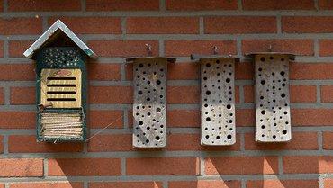 Insectenhotel / Hans Peeters