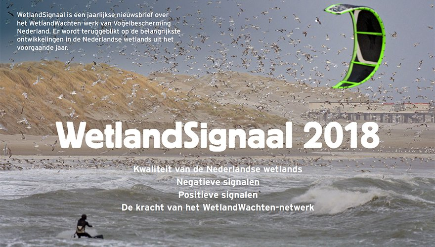 WetlandSignaal 2018