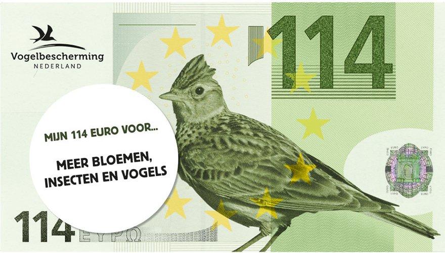 114 euro