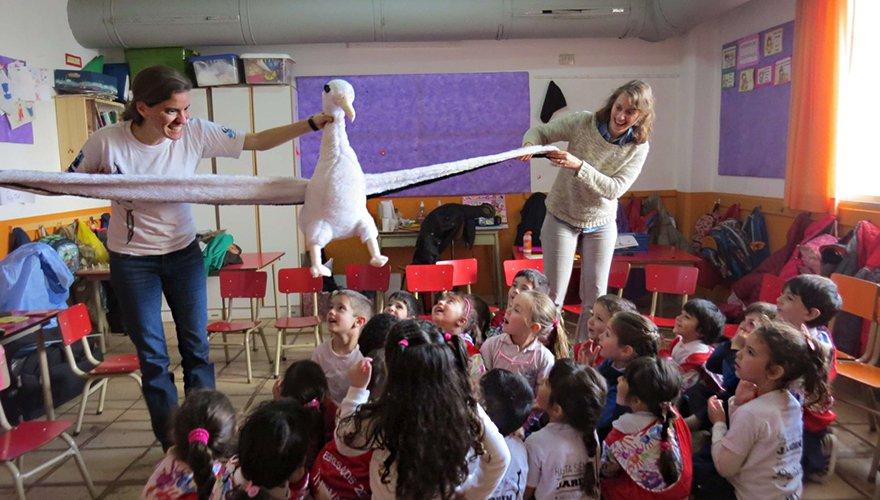 Educatie albatrossen / Mika Jardin