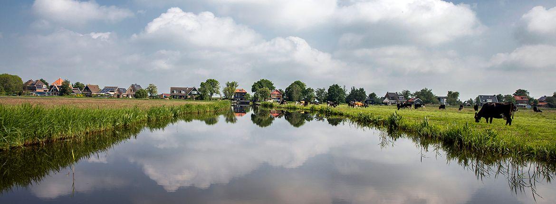 Weiland van Sjaak Hoogendoorn / Fred van Diem