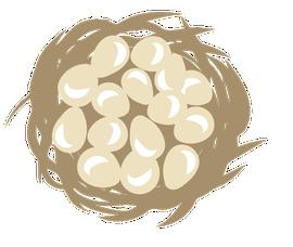 Patrijzennest met eieren