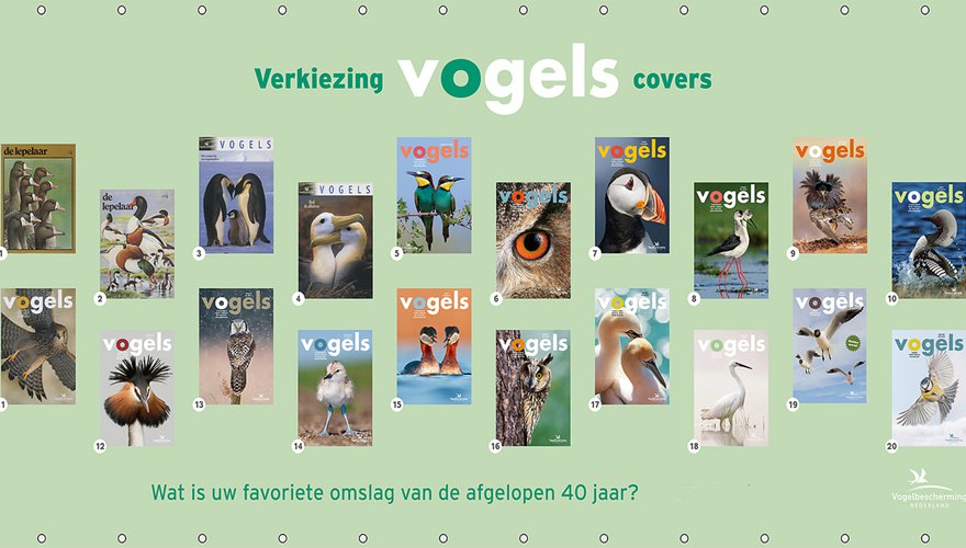 Covers Vogels