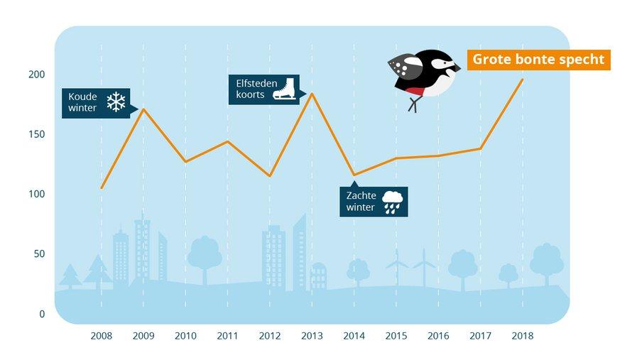 Grafiek grote bonte specht Tuinvogeltelling
