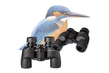Vogelbescherming IJsvogel serie