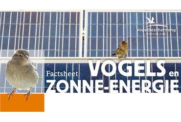 Factsheet Vogels en zonne-energie