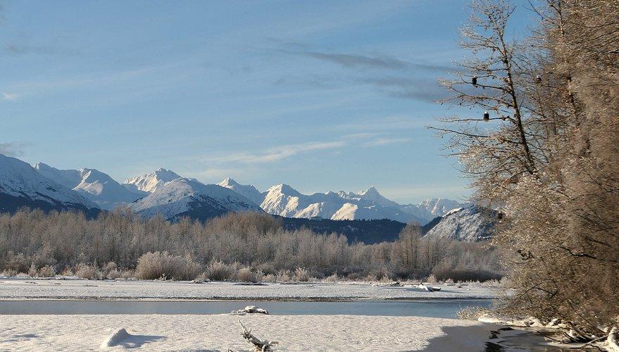 Alaska / Nienke Beintema