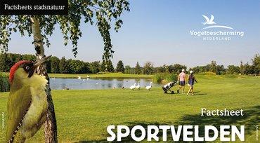 Download factsheet sportvelden