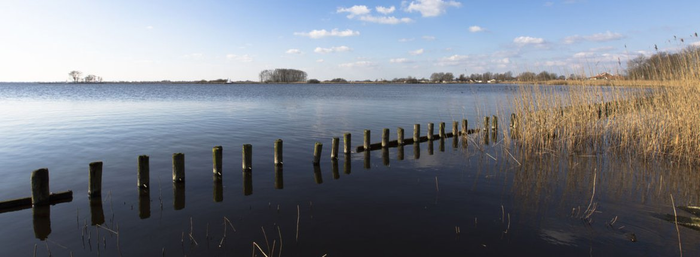 Sneekermeer / Agami