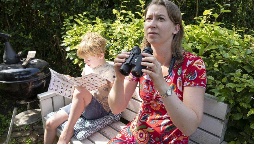 Vogels tellen in de tuin / Fred van Diem