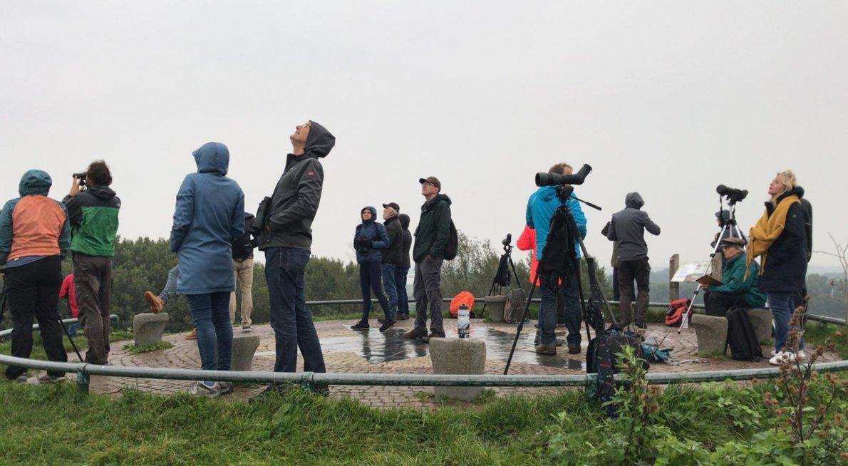 Telpost Luhrs / Maurice van Veen