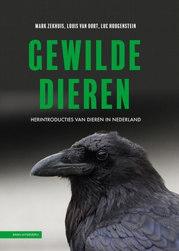 https://cdn-img.newstory.nl/vlinderstichting/images/optimized/cf6f324e-37e4-47c4-8426-c9d1b2161daa.jpg&w=370&v=1612942053